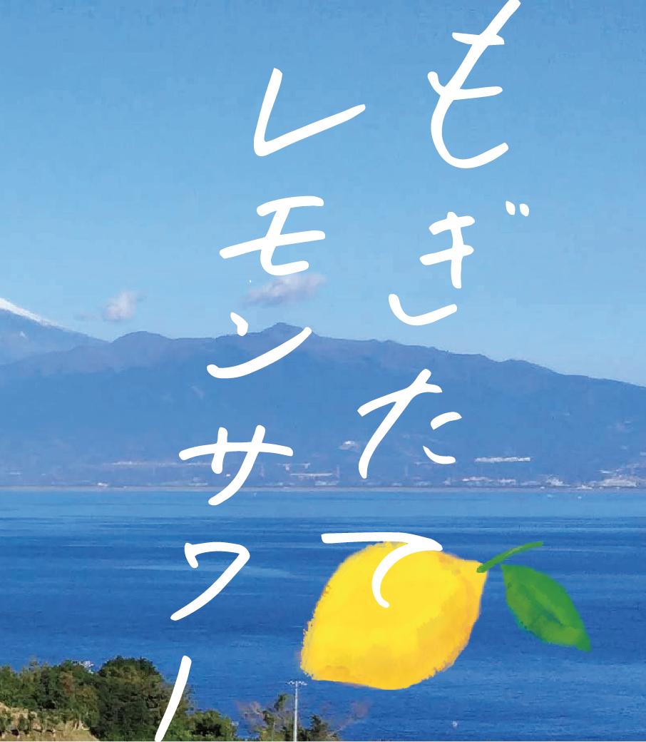 農家でもぎたてのレモンを絞って作るサワーはどれくらい美味しいのかを実証実験する、レモンづくしの飲みツアー!
